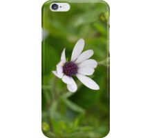 Purple South African Flower iPhone Case/Skin