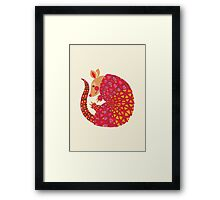 The Ethnic Armadillo Framed Print