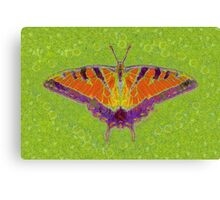 BUTTERFLY BRINGS LUCK Canvas Print