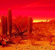 DESERT FIRE by THOR01