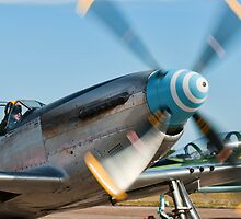 P-51 Mustang  by Michael Howard
