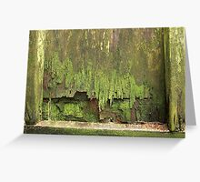 moss garden V Greeting Card