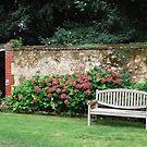 Garden Bench (original )  by DiamondCactus