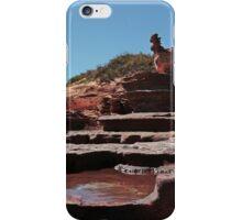 Chook Cascades iPhone Case/Skin