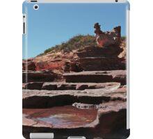 Chook Cascades iPad Case/Skin