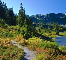 Bagley Lakes Trail, Mt. Baker Wilderness Area by Barb White