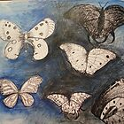 Butterflies. by RuthHunt