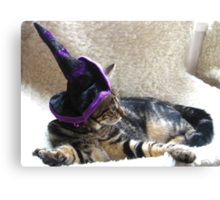 Hocus Pocus Kitty Focus Canvas Print
