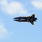 Blue Angels by jhames808