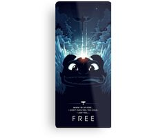 How to Train your Dragon 2 - Freedom Metal Print