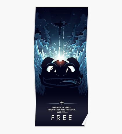 How to Train your Dragon 2 - Freedom Poster