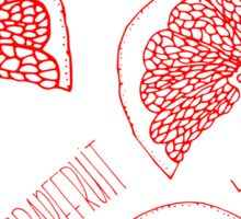 Grapefruit hand drawn red doodle seamless pattern. Sticker