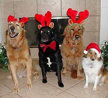 A Very Furry Christmas by LyndaE