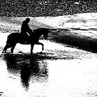 Horse and Rider Silhouette by Philip Bateman