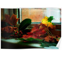 the color of fall Poster