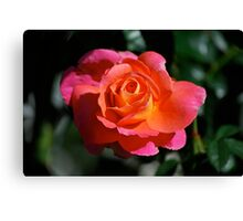 Words & Roses Calendar -  2011 - Cover Canvas Print