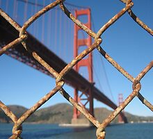 Fence at the Golden Gate, San Francisco by Ian Bracey