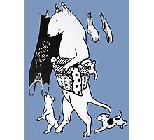 Bull Terrier Laundry Photographic Print