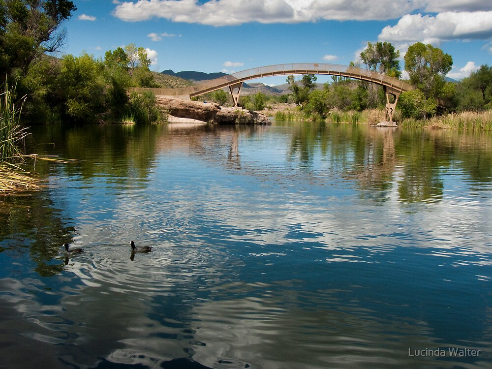 Bridge at patagonia lake state park by lucinda walter for Patagonia lake fishing