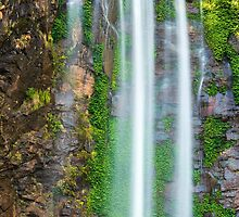 Queen Mary Falls by Rob D