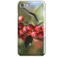Berry Delight iPhone Case/Skin