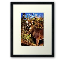 The Magestic Framed Print