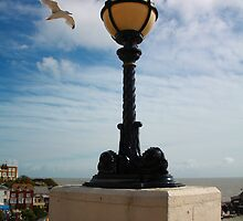 Lamp and seagull at Broadstairs Seafront - Sept 2010 by Deb Gibbons