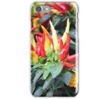 Red chili pepper  iPhone Case/Skin