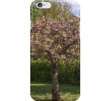 A last sign of spring iPhone Case/Skin