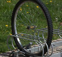Ok, the lock worked..... by Larry Llewellyn