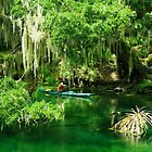Florida by Deborah  Benoit
