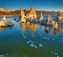 Mono Lake Ca Golden Tufas Wide Angle by photosbyflood
