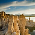 Mono Lake CA Family Portrait by photosbyflood