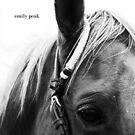 Listen by Emily Peak