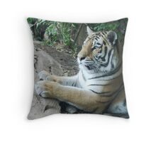 hey kitty kitty Throw Pillow