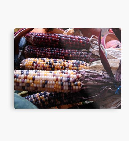 Indian Corn Metal Print