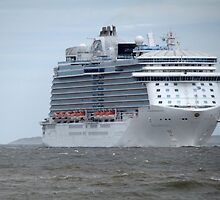 The Royal Princess enters the River Mersey 5-8-15 by PhotogeniquE IPA