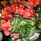 Christmas flowers by Mary Tomaselli