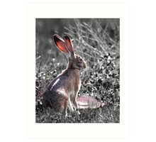 Tortoise and the Hare in Portrait Art Print