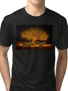 The golden tree of Naxos Tri-blend T-Shirt