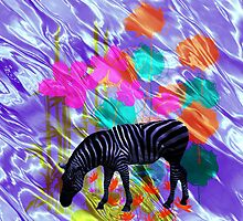 Zebra & Colour. by Vitta