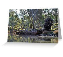 Fallen Tree at Eppalock Greeting Card