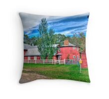 """What!...were you raised in a barn"" Throw Pillow"