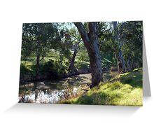 Trees along the Riverbank Greeting Card