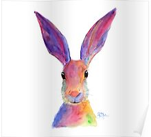 HAPPY HARE 'JELLY BEAN' BY SHIRLEY MACARTHUR Poster