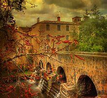 Pondaurat  South West France . by Irene  Burdell