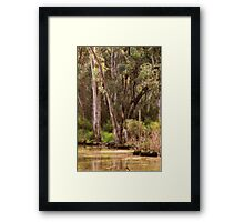 Trees at Gunbower, near Cohuna, Victoria  by Lorraine McCarthy Framed Print