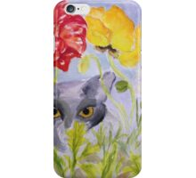 Grey Cat iPhone Case/Skin