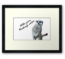 Who you looking at? Framed Print
