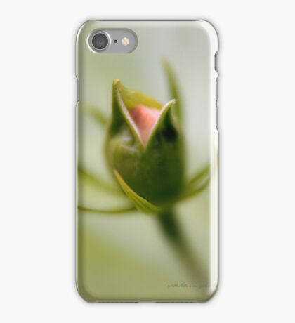 Bud © Vicki Ferrari iPhone Case/Skin